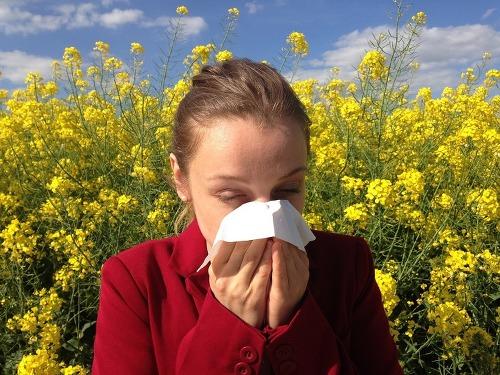 누구나 쉽게  알레르기를 이겨낼 수 있는 방법 7가지