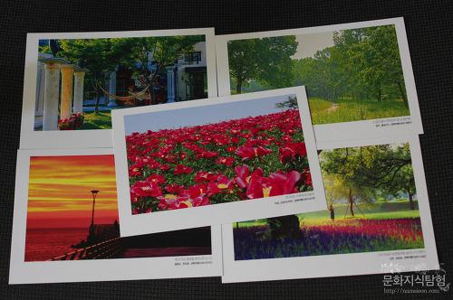 제 사진이 들어간 경북 여행 사진 엽서가 나왔어요