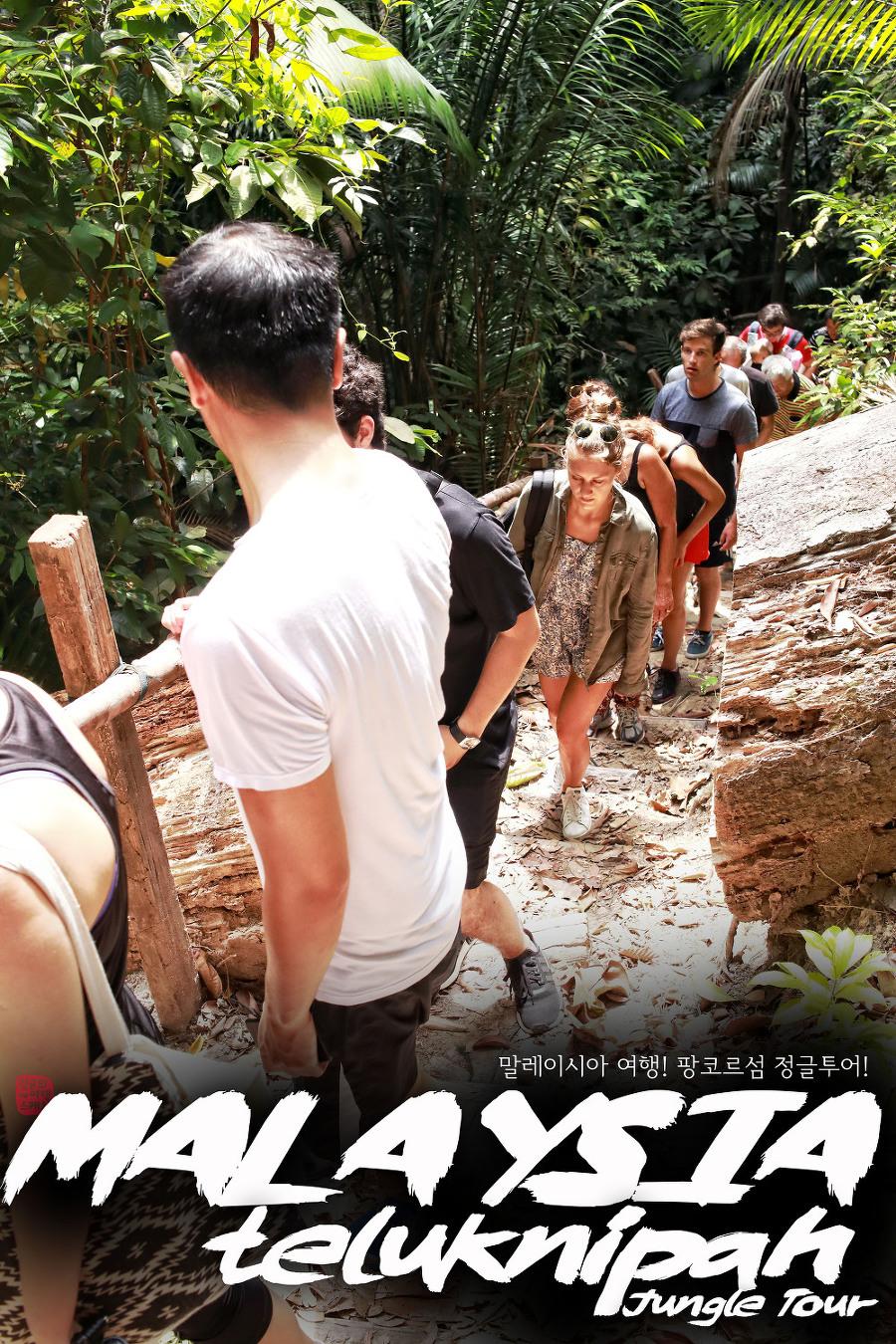 말레이시아 여행! 팡코르섬 정글투어!