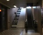 김남미 - 김남미 강사의 재미있는 바이럴 UCC 이렇게 재미있는 계단이라면?