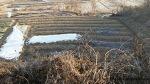 자연을 담은 농장 주바라기