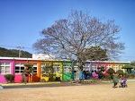 '색'이 살아있는 학교, 제주 애월초등학교 더럭분교 | 포토갤러리