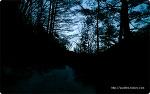 소백산의 겨울