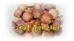 11월 제철 해산물 (가리비찜)