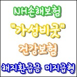 NH 가성비굿건강보험 - 해지환급금미지급형