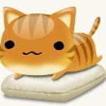 반려묘 고양이가 기침을 한다면 천식을 의심하자.