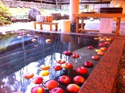 사과가 둥둥 떠있는 온천 본 적 있으세요?