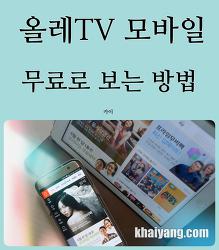 가정 평화 지켜준다? KT 올레TV모바일 무료로 보는 방법