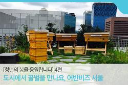 달콤한 도시를 만들다, '어반비즈 서울' 박진 대표 [청년의 봄을 응원합니다] 4편