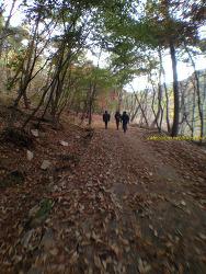 박달재자연휴양림 정모