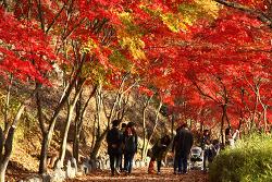 함안여행 단풍이 아름다운 입곡군립공원