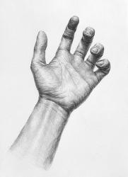 [인체소묘 / 과정작] 손