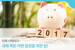 2017년 새해 목표 목돈 모으기! 달성 노하우