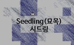 2D 플래시 RPG게임 - Seedling