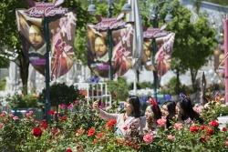 에버랜드, 문학과 함께 하는 '장미 축제' 오픈