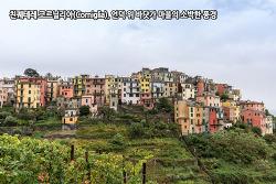 친퀘테레 코르닐리아(Corniglia), 언덕 위 바닷가 마을의 소박한 풍경