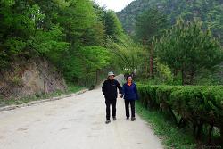부모님과의 봉화, 울진 여행 (둘)