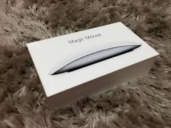 애플 매직마우스2