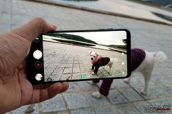 LG V30 시네 비디오로 담은 말티즈 강아지 꼬미의 산책!