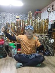 산삼문화 8월호 메인 표지 한국산원초산삼협회 강원지회장님 (산원초)
