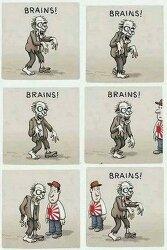 뇌를 먹는 좀비