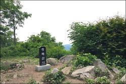 20180617 청대덕장 (청태산 대미산 덕수산 장미산) (강원횡성 평창)