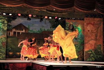 화려한 의상축제 삼바카니발