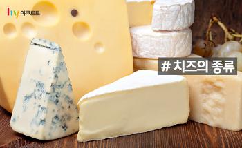 리코타? 까망베르? 유럽 나라별 대표 치즈