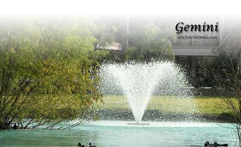 1HP~5HP Gemini(제머니)
