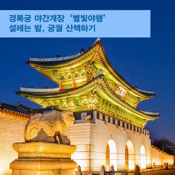 경복궁 야간개장 '별빛야행'! 설레는 밤, 궁궐 산책하기