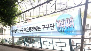 구구단 2017 동국대 봄 대동제 꽃끼리 출격 대학축제