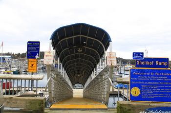 """알래스카"""" Kodiak의 항구 풍경"""""""