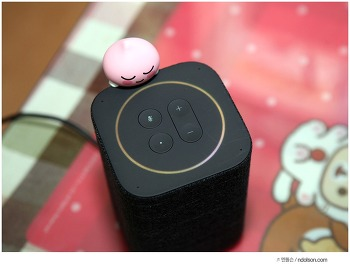 헤이 카카오, 이제 말로 하는 카카오미니, 귀여운 프렌즈스피커 인공지능 스피커 후기