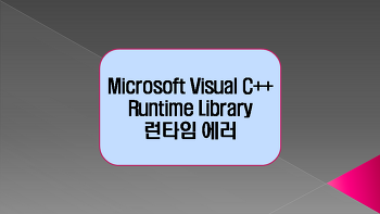 Microsoft Visual C++ Runtime Library 런타임 에러