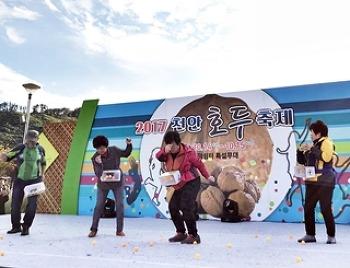2017 천안 호두 축제 현장을 소개합니다!