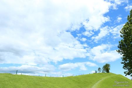 [14.08.09] 순천만 생태공원,순천만 정원 직찍 by hoyasama
