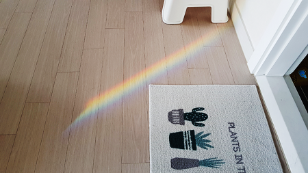 Rainbow in the Home.