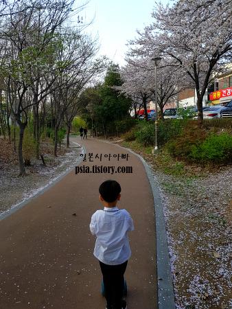 벚꽃 흩날리며 킥보드타는 아들을 보며, 봄바람..