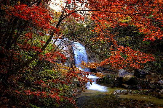 방태산의 가을
