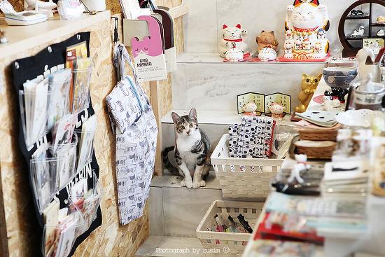 집사들을 위한 고양이 잡화점 니쿠큐