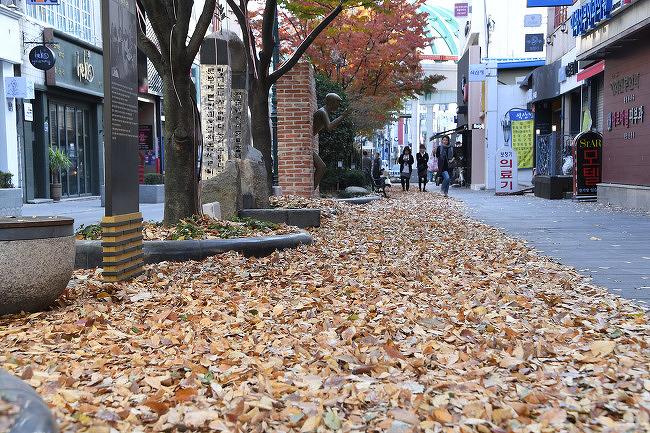 문화의거리 낙엽길