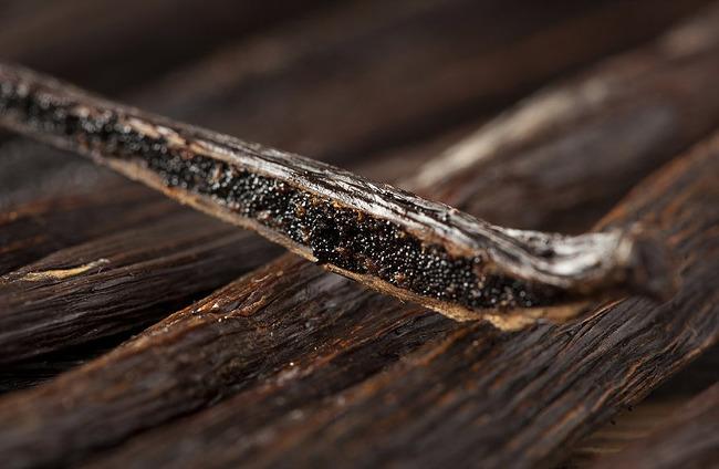 바닐라(Vanilla) 향신료에 대한 잡담