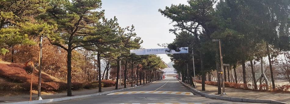18학번 신입생들을 위해 직접 준비한 홍익대학교 세종캠퍼스 투어!