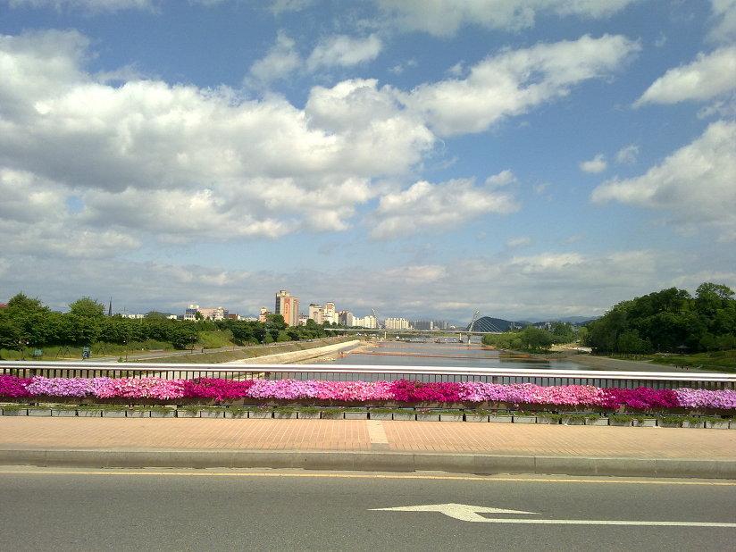 아양교에서 동촌유원지 뱃놀이하는 모습 Dongchonyouwonji, view from Ayanggyo
