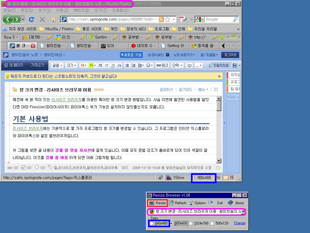 리사이즈 브라우저를 이용하여 800x600 크기로 바뀐 파이어폭스 창