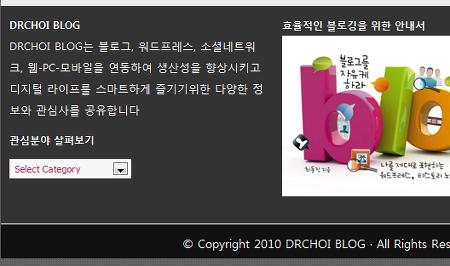 dr.choi 홈페이지 캡쳐