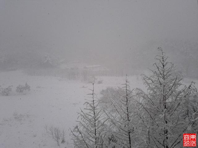 속초 - 눈풍경