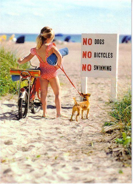 난감한 여자아이와 강아지