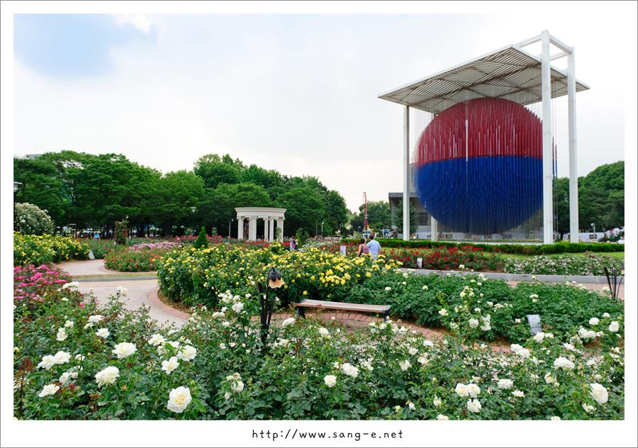 Sang-E's Photo Blog :: 올림픽공원 9경중 제 9경 장미광장을 다녀오다.