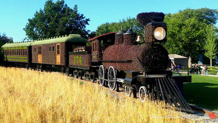 캐나다 태평양 철도 기차입니다